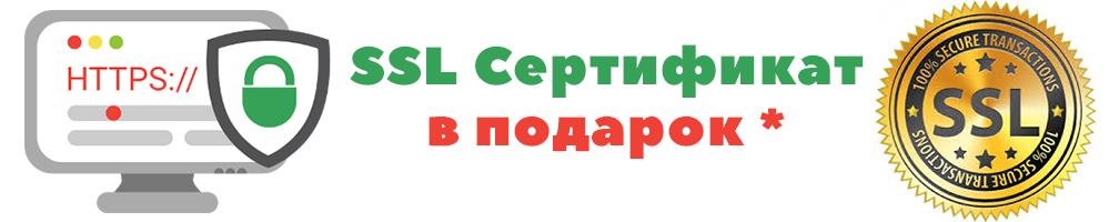 ssllmini_ru